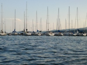 Sail Boats at Flathead Valley Lake Montana
